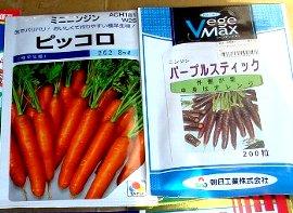 紫ニンジンの「パープルスティック」とミニニンジンの「ピッコロ」の種<br />  3-16