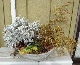 2008年冬