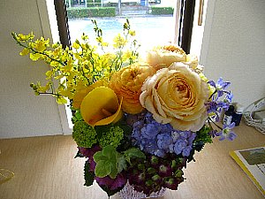 IMG_9874-4-25-1.jpg