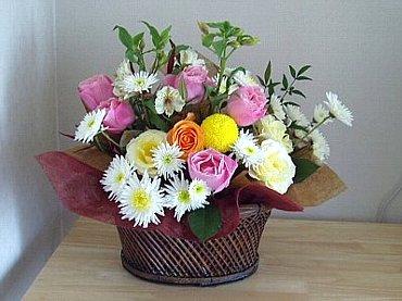 P1010013-2006-12-2-1.jpg