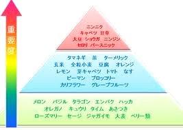 images[5].jpg